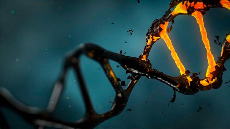 Los uruguayos que modifican el genoma humano