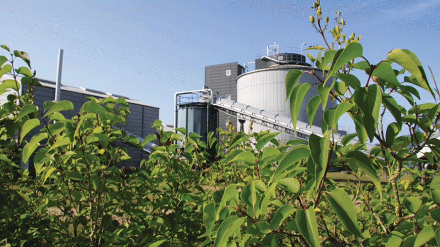 Biorrefinería: de la biomasa a los biocombustibles y productos químicos