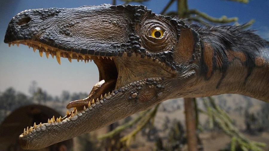 Los dinosaurios fueron víctimas de su éxito como conquistadores