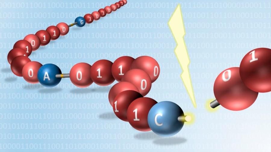Consiguen por primera vez leer información almacenada en polímeros