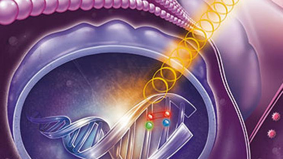 Investigadores descubren una protección del ADN contra la radiación UV