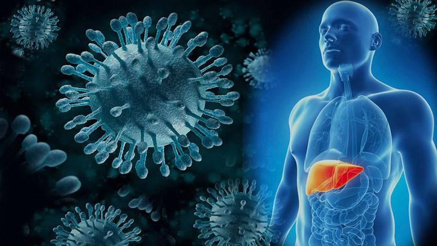 Hepatitis A,B,C,D, y... también la E, causada por un enigmático virus