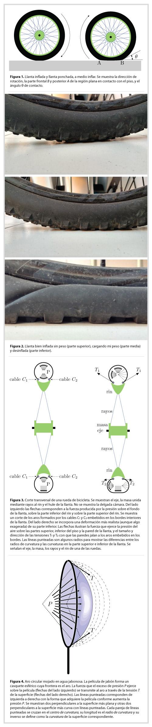 http://www.acmor.org.mx/?q=la-ciencia-de-morelos-para-el-mundo