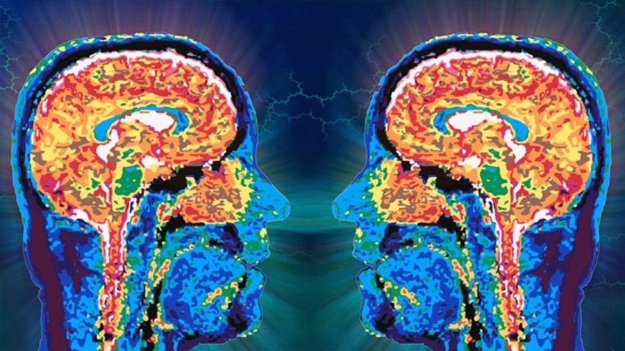 Descubren cómo el cerebro identifica a la persona con la que hablamos