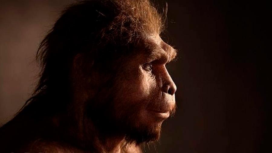 Postula investigador que el Homo erectus inventó el lenguaje hace 1.9 millones de años