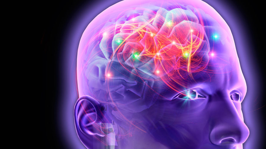 Científico logró activar neuronas específicas utilizando un novedoso método luminoso