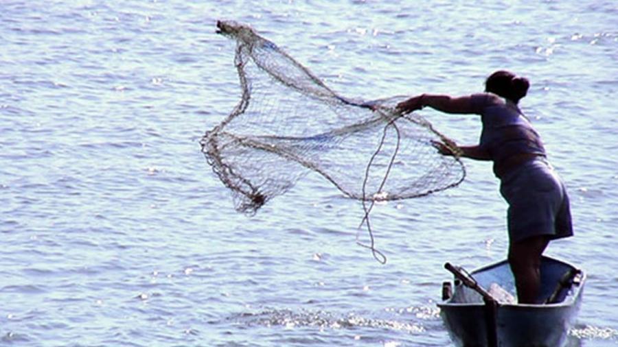 Fomentar la participación de las mujeres de manera equitativa en programas y proyectos que impulsen el desarrollo de la actividad pesquera y acuícola