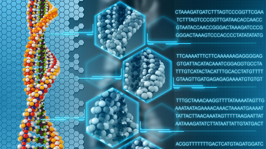 Confirman que hay una segunda capa de información en nuestro ADN