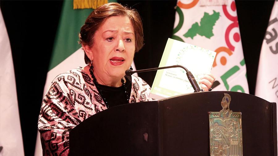 """El Pleno aprobó otorgar el reconocimiento """"Elvia Carrillo Puerto"""" a María Elena Chapa Hernández"""