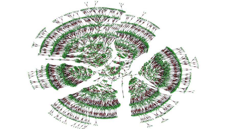 Crean el mayor árbol genealógico: 13 millones de personas de once generaciones