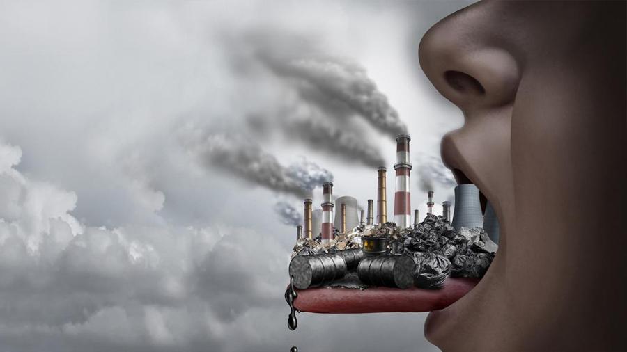 Contaminantes ambientales. OBESIDAD, más allá de la dieta y el ejercicio