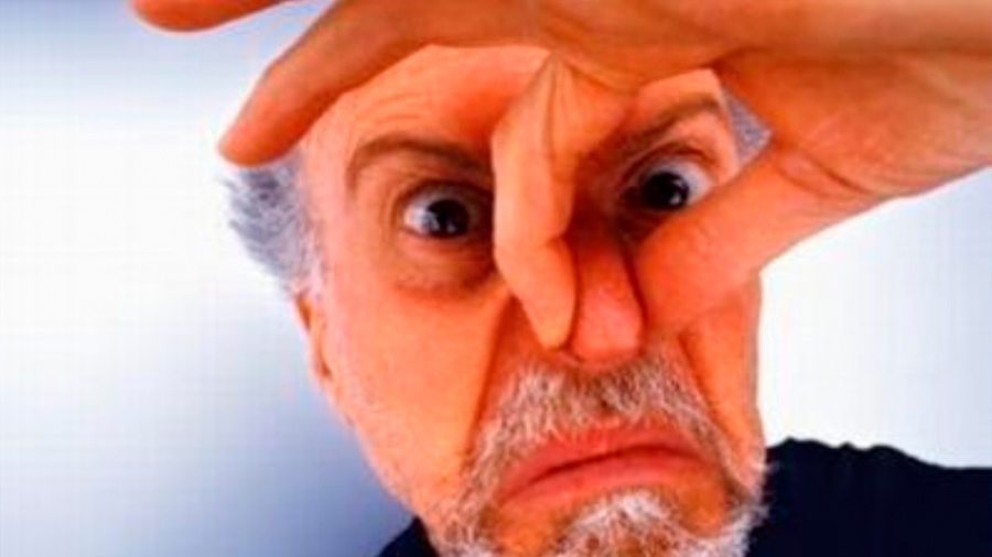 ¿Odias el olor corporal? Entonces es más probable que seas de derechas, según la ciencia