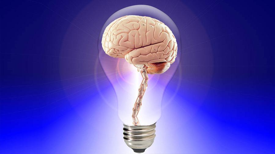 El LSD reorganiza y armoniza el cerebro, revela una nueva investigación