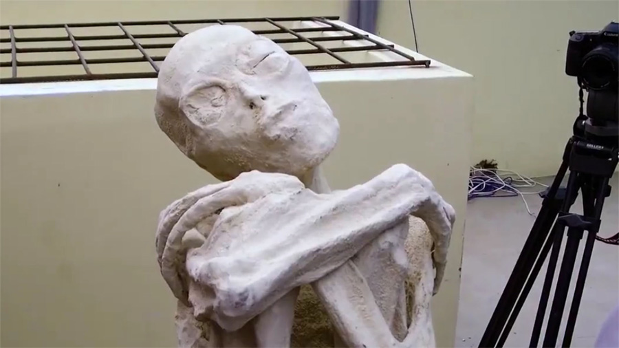 La momia 'María' es humanoide, con 23 cromosomas, pero su anatomía no