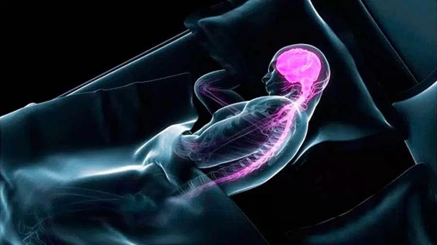 El cerebro decodifica los recuerdos durante el sueño