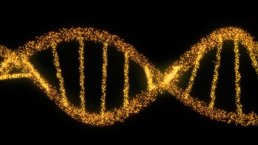 Cómo ver y manipular simultáneamente una única molécula de ADN