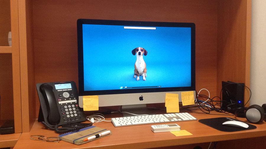 Crean investigadores mexicanos sistema que clasifica e interpreta ladridos de perros ante posibles eventos de alarma