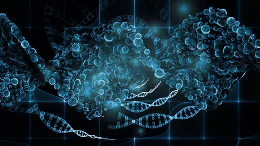 Tu ADN ya se puede programar