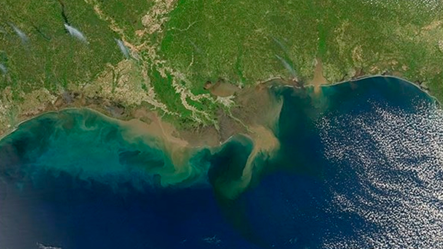 El área 'asfixiada' del Golfo de México no se recuperará hasta casi 2050