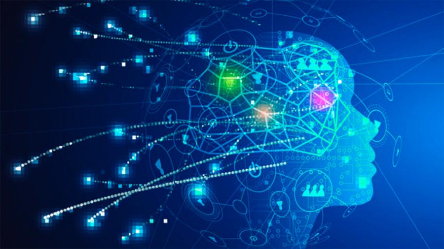 """Descubren un """"tesoro"""" de genes relacionados con la inteligencia humana"""