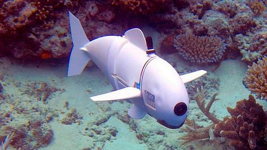 Conoce a 'SoFi', el pez robótico del MIT para documentar la vida marina