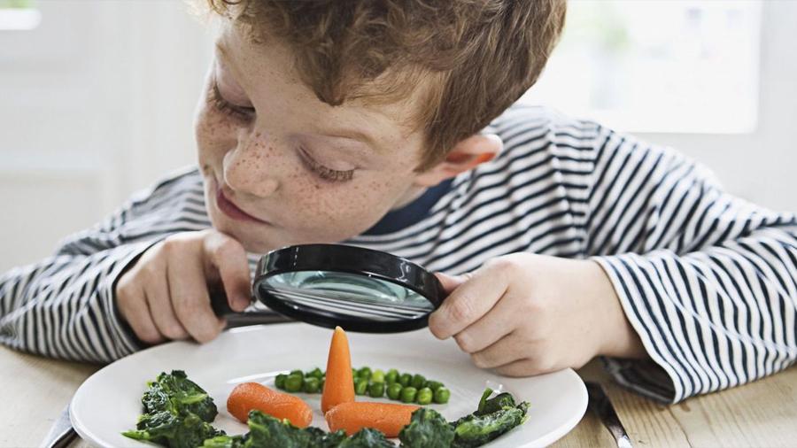 En cada comida ingerimos 100 partículas plásticas del polvo ambiental