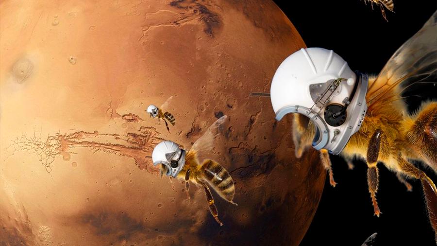 La NASA planea explorar Marte con abejas robóticas