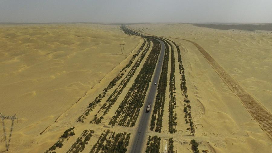 China exporta su Gran Muralla Verde para contener el Sáhara