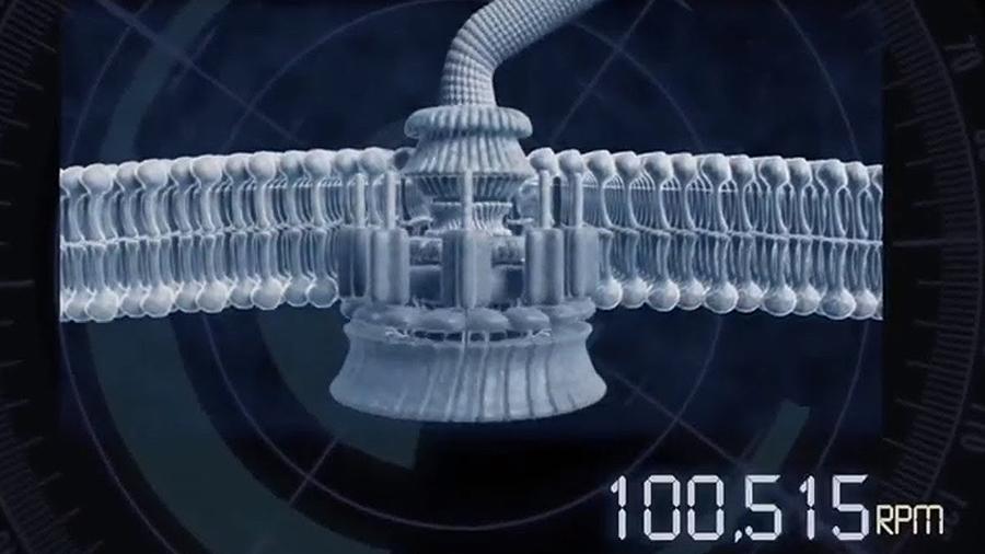 Fabrican un nanomotor con ADN