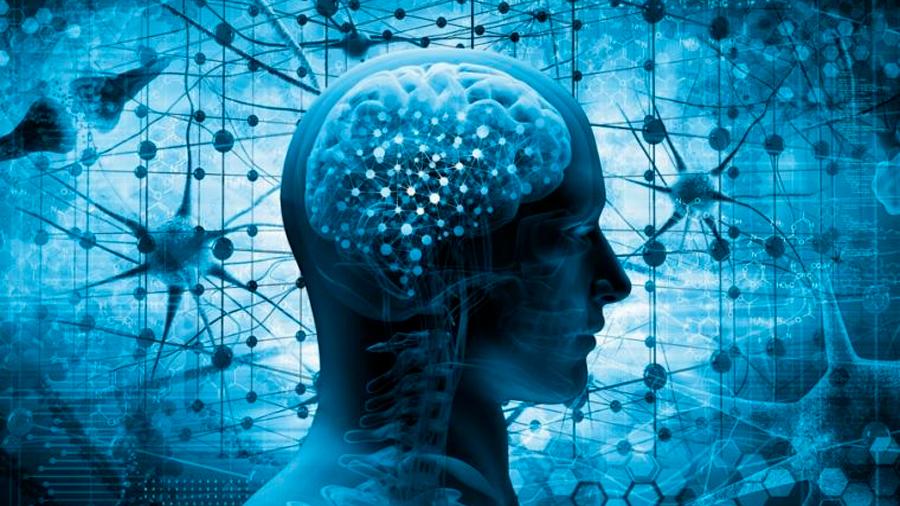 Anulan el principal gen asociado al alzhéimer