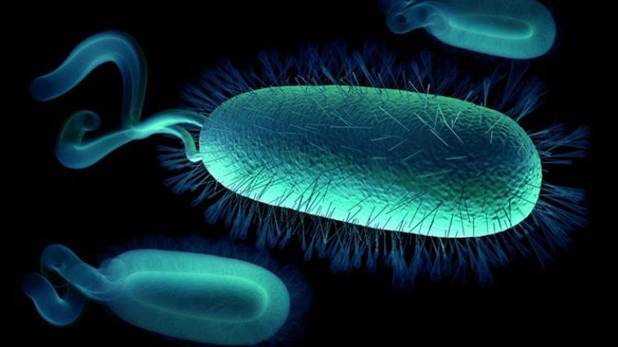 Científicos de EU dan paso hacia creación de vida artificial
