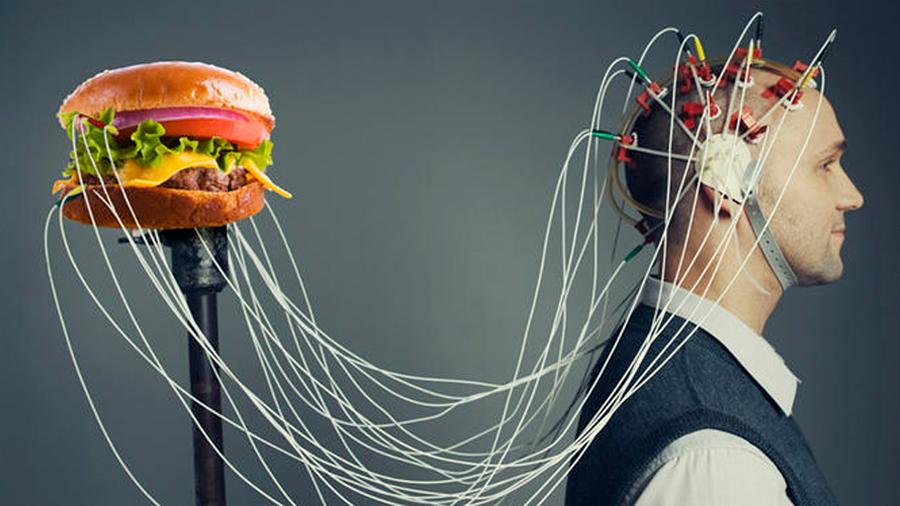 Hallan científicos clave para buscar apagar el interruptor de la obesidad