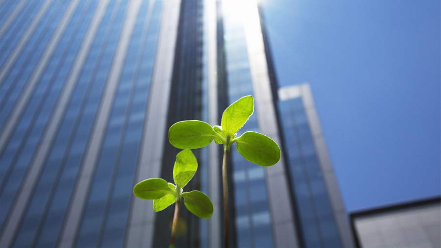 El combustible clave del futuro se llama eficiencia energética