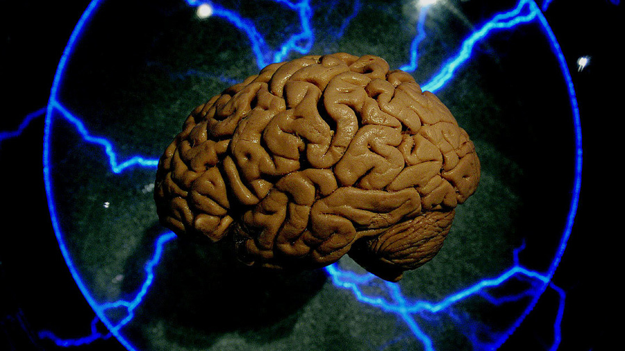 Químicos diseñaron sustancias capaces de aumentar la memoria en el cerebro