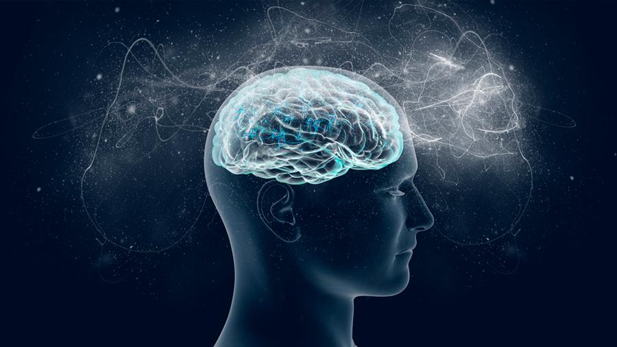 Descubren que el cerebro humano se actualiza ante los hechos imprevistos