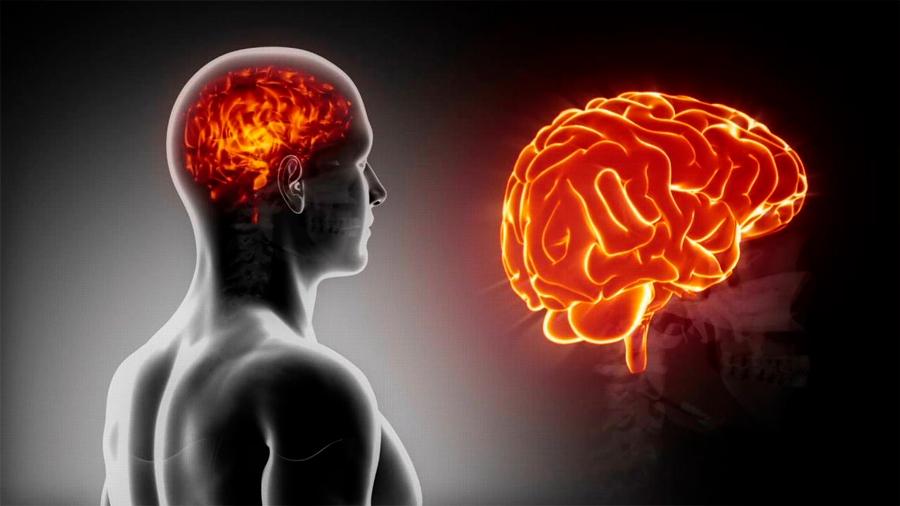 """Un sistema neuronal capaz de """"leer la mente"""" está siendo aplicado en la industria China"""