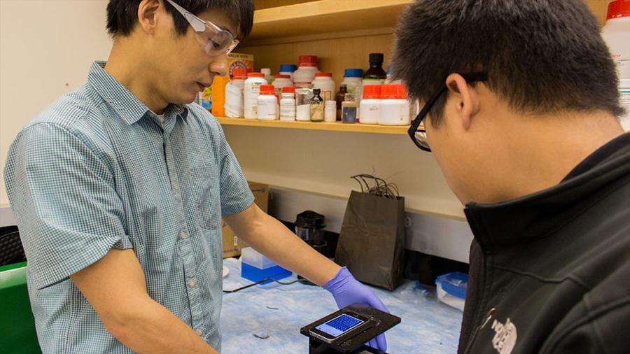 Un laboratorio 'low cost' en el móvil para detectar infecciones de virus y bacterias