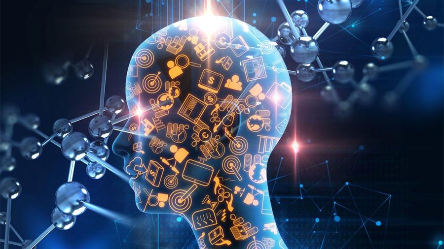 Descubren las bases celulares de la inteligencia humana