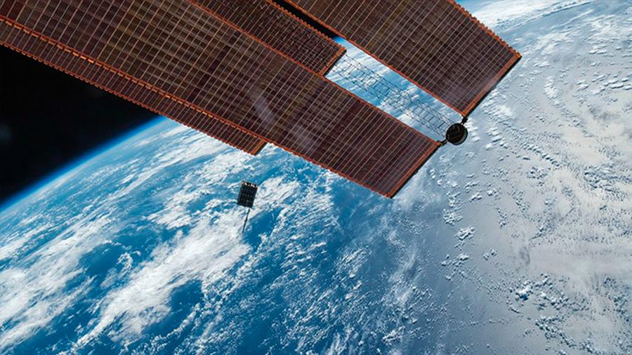 Ratones 'estresados' en el espacio regresan a la Tierra