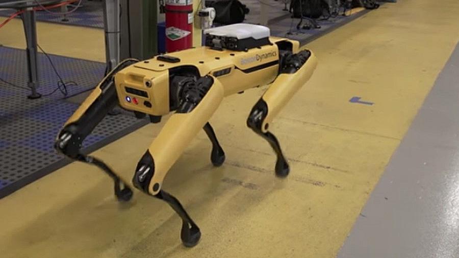 El robot-perro reaparece y vuelve a asombrar al mundo
