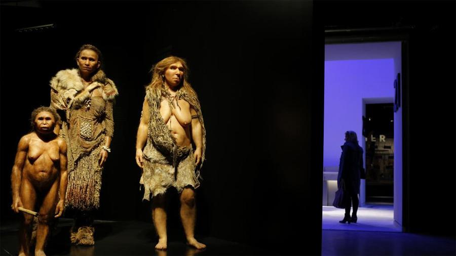 La sencilla razón que explica por qué se extinguió el hombre de Neandertal