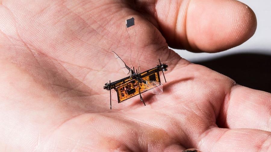 Primer robo-insecto que vuela sin cables