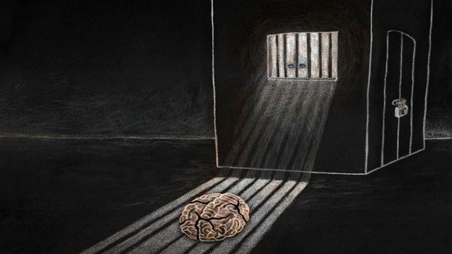 Constatan en ratones que el cerebro se transforma al sufrir aislamiento social crónico