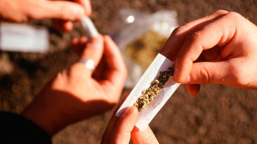 Identifican el mecanismo molecular que relaciona consumo de cannabis y desarrollo de esquizofrenia
