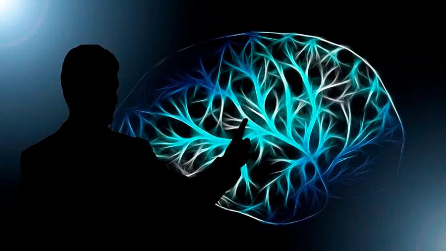 El neurobiólogo mexicano que reprograma las neuronas