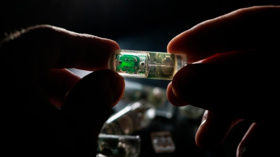 Crean sensor que se podrá tragar para detectar enfermedades digestivas