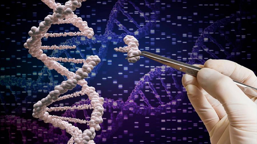 7 fascinantes cosas que la ciencia ha logrado con la edición genética CRISPR