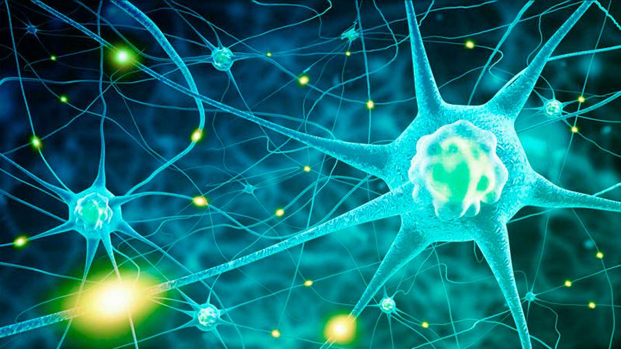 La acumulación de una proteína en la retina podría ayudar a detectar el párkinson y el grado del mal