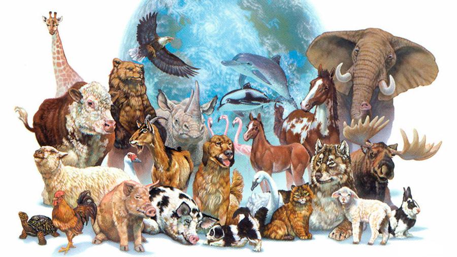 Sólo el 4% de los mamíferos y el 30% de las aves son hoy salvajes