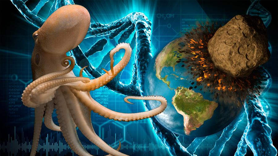 Autor de artículo científico cuestiona si ¿vienen los pulpos del espacio exterior?